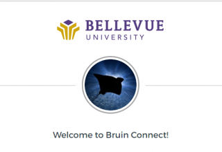Communications for Faculty: About Student BRUIN Connect Rollout