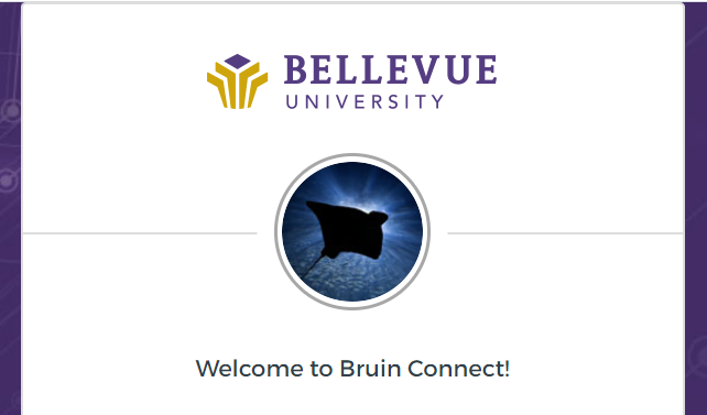 BRUIN Connect