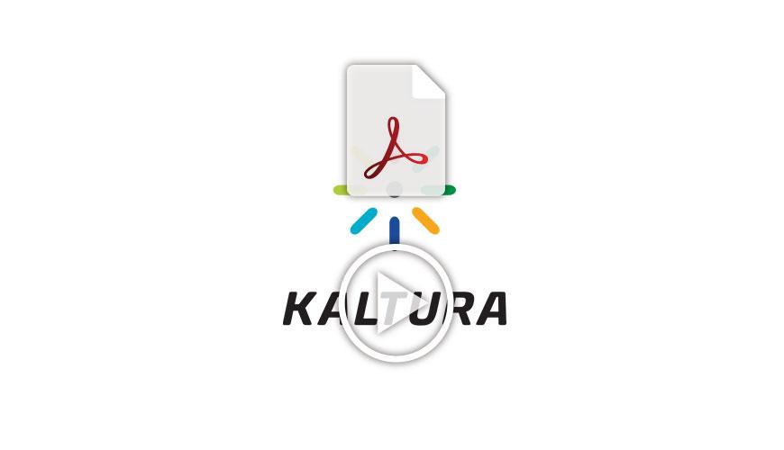 Kaltura2